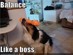 Balance  Like a boss