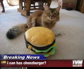 Breaking News - i can has cheezburger?