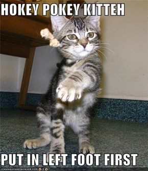 HOKEY POKEY KITTEH  PUT IN LEFT FOOT FIRST