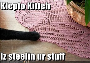 Klepto Kitteh   Iz steelin ur stuff