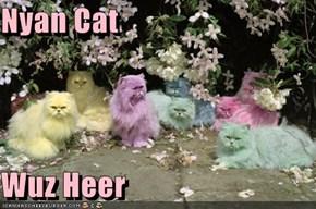 Nyan Cat   Wuz Heer