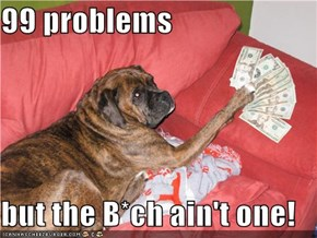 99 problems  but the B*ch ain't one!