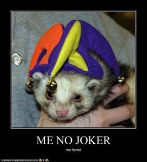 ME NO JOKER