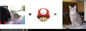 Mario Math