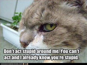 Don't act stupid around me. You can't act and I already know you're stupid.