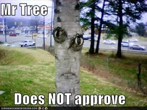 Mr Tree  Does NOT approve