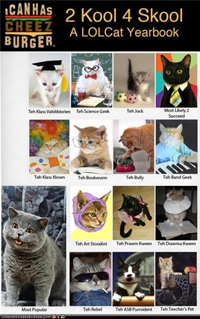 2 Kool 4 Skool: A LOLCat Yearbook