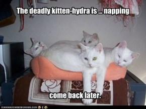 The deadly kitten-hydra