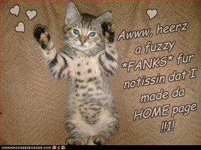 Awww, heerz a fuzzy *FANKS* fur notissin dat I made da HOME page !!1!