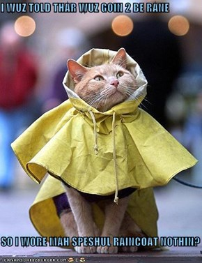 I WUZ TOLD THAR WUZ GOIN 2 BE RANE  SO I WORE MAH SPESHUL RAINCOAT NOTHIN?