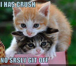I HAS CRUSH  NO SRSLY GIT OFF