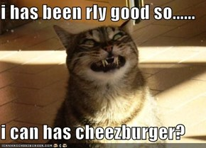 i has been rly good so......  i can has cheezburger?