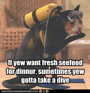 If yew want fresh seefood for dinnur, sumetimes yew gotta take a dive