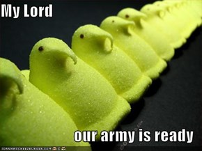 My Lord  our army is ready