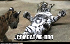 Tiger Edition