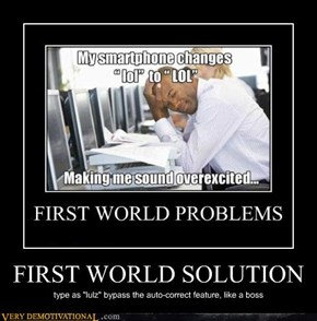 FIRST WORLD SOLUTION