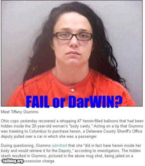 FAIL or DarWIN?
