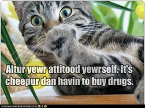 Altur yewr attitood yewrself. It's cheepur dan havin to buy drugs.