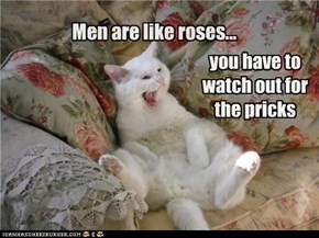 Men are like roses...