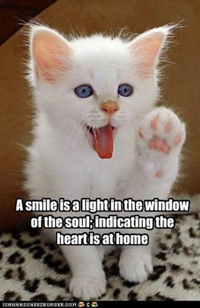 A smile is a light in the window of the soul; indicating the heart is at home