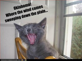 Oklahoma!   Where the wind comes      sweeping down the plain...