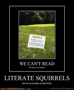LITERATE SQUIRRELS