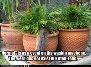 """Normul"" is as a cycul on tha washin machene. The werd dus not exist in Kitteh-Land."