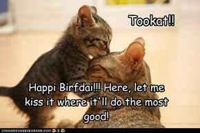 Happi Birfdai!!! Here, let me kiss it where it'll do the most good!
