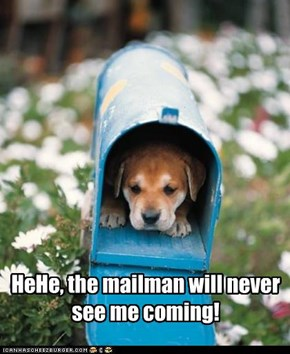 HeHe, the mailman will never see me coming!