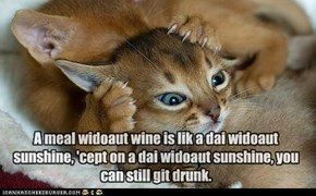 A meal widoaut wine is lik a dai widoaut sunshine, 'cept on a dai widoaut sunshine, you can still git drunk.