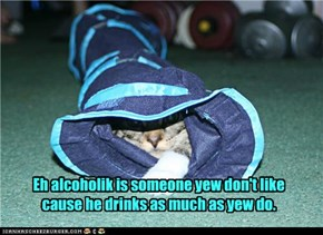Eh alcoholik is someone yew don't like cause he drinks as much as yew do.