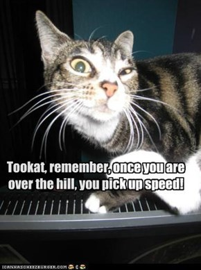 Tookat, remember, once you are over the hill, you pick up speed!