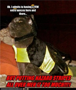 Ok. I admits ta hasing a FEW extra ounces here and there...BUT PUTTING HAZARD STRIPES ALL OVER MEH IZ TOO MUCH!!!1