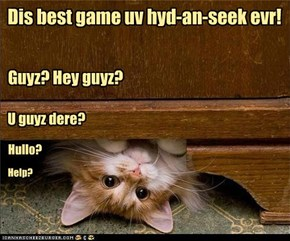 Dis best game uv hyd-an-seek evr!