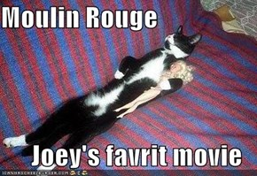 Moulin Rouge  Joey's favrit movie