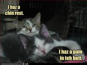 I haz a chin rest.