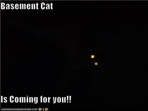 Basement Cat  Is Coming for you!!