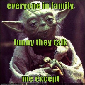 everyone in family funny they talk me except