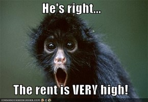 He's right...  The rent is VERY high!