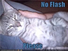 No Flash  Please