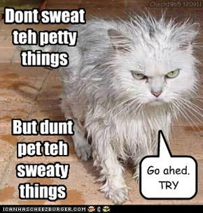Dont sweat teh petty things