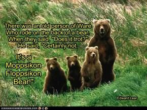 a limerick for BG's bear