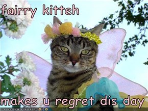 fairry kitteh  makes u regret dis day