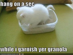 hang on a sec   while i garnish yer granola
