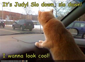 It's Judy! Slo down, slo down!   I wanna look cool!