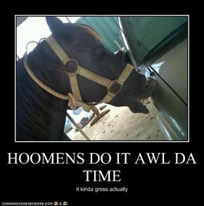 HOOMENS DO IT AWL DA TIME