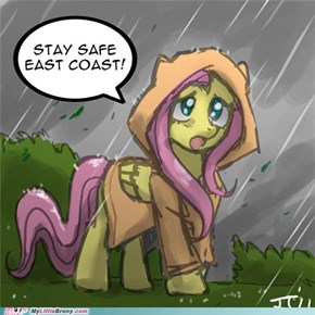 Send Rainbow Dash to clear up the sky!