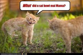 Whut did u sai 'bout mai Mama?
