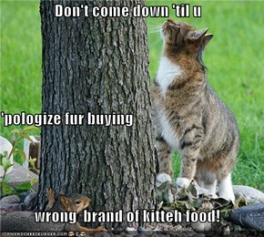 Don't come down 'til u 'pologize fur buying wrong  brand of kitteh food!
