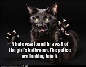 A hole was found in a wall of the girl's bathroom. The police are looking into it.